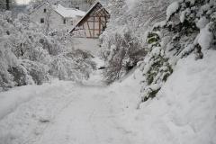 Im-Schnee-1