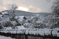 Im-Schnee-3